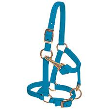Halters By Weaver Leather - From $16.69