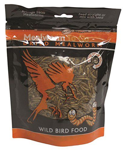 Mealworm To Go Dried Wild Bird Food 1.1 LB.
