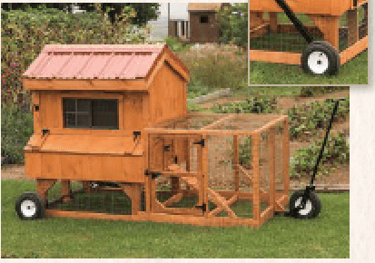 Chicken Coop 4 - BY 8'