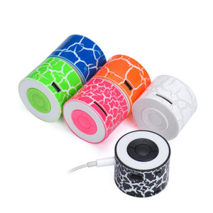 MP3 Player USB Animal print Style