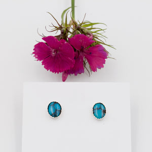 Turquoise Oval Stud Earrings