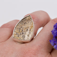 Hells Canyon Petrified Wood Ring