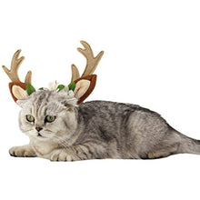 Load image into Gallery viewer, Reindeer Accessory