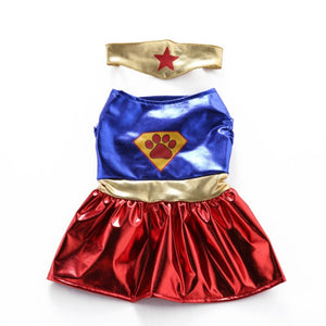 Funny Superhero Dog Costume
