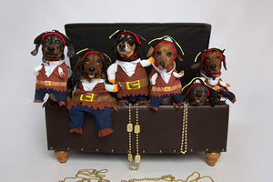 Pirate Dog Costume Halloween