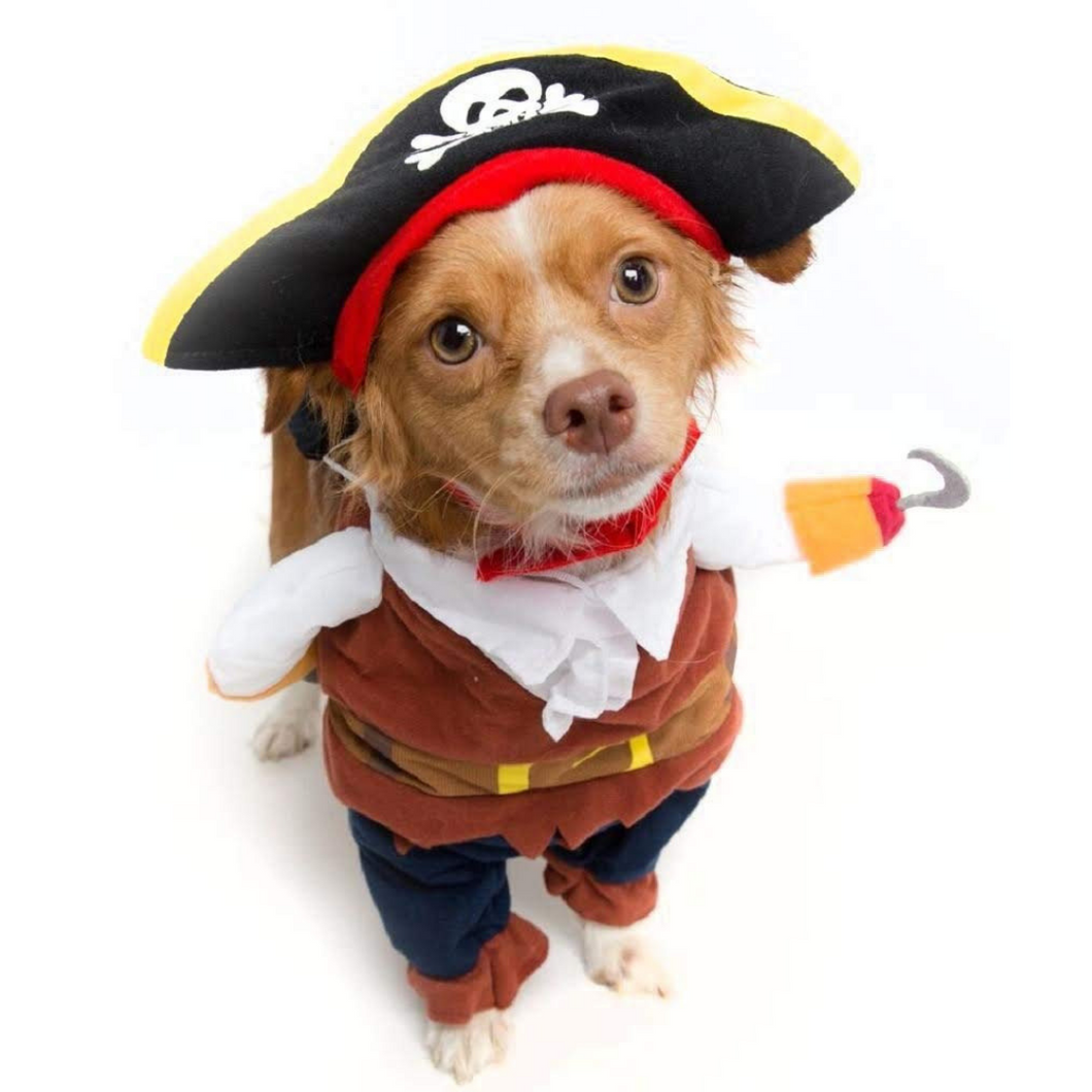 Funny Pirate Captain Dog Costume Halloween