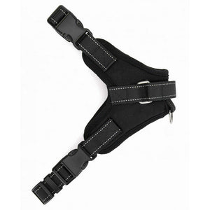 Adjustable Harness