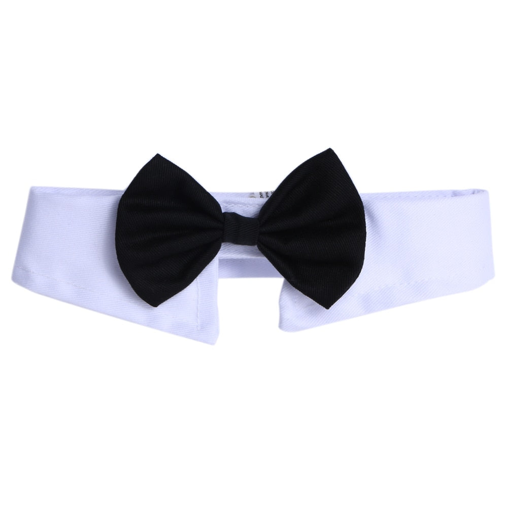 Sophisticated Black Bow Tie