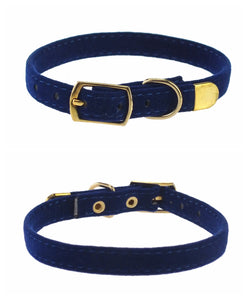 Fashionable Small Dog Collar