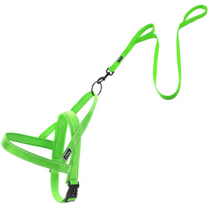 2PC Set Reflective Leash and Harness