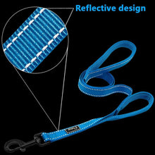 Reflective Leash