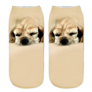 The Sleeping Spaniel Socks