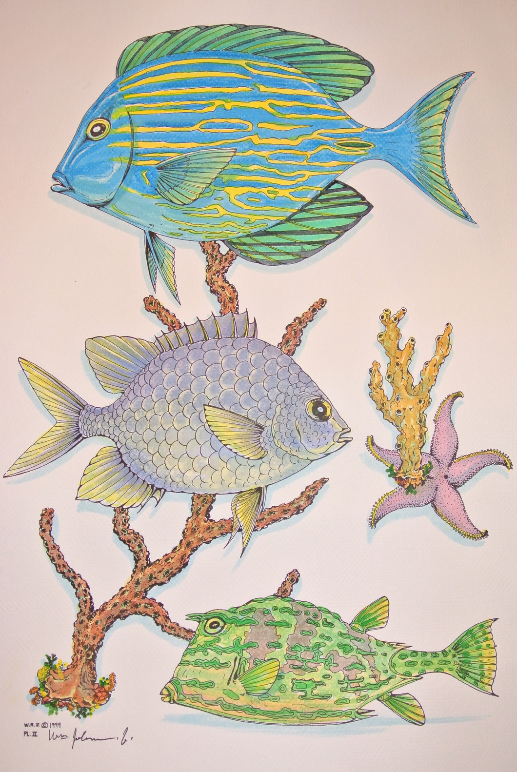 Blue Tang Watercolour