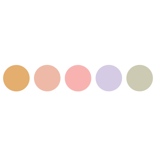 5 WELL COLOUR CORRECTOR PALETTE