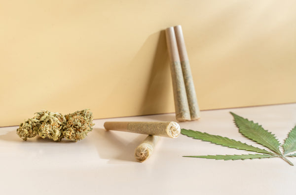 Your Definitive Guide to Pre-Rolls