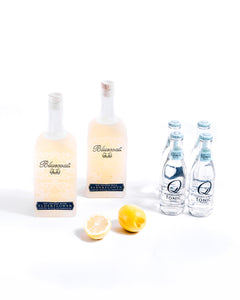 Elderflower Spritz Kit
