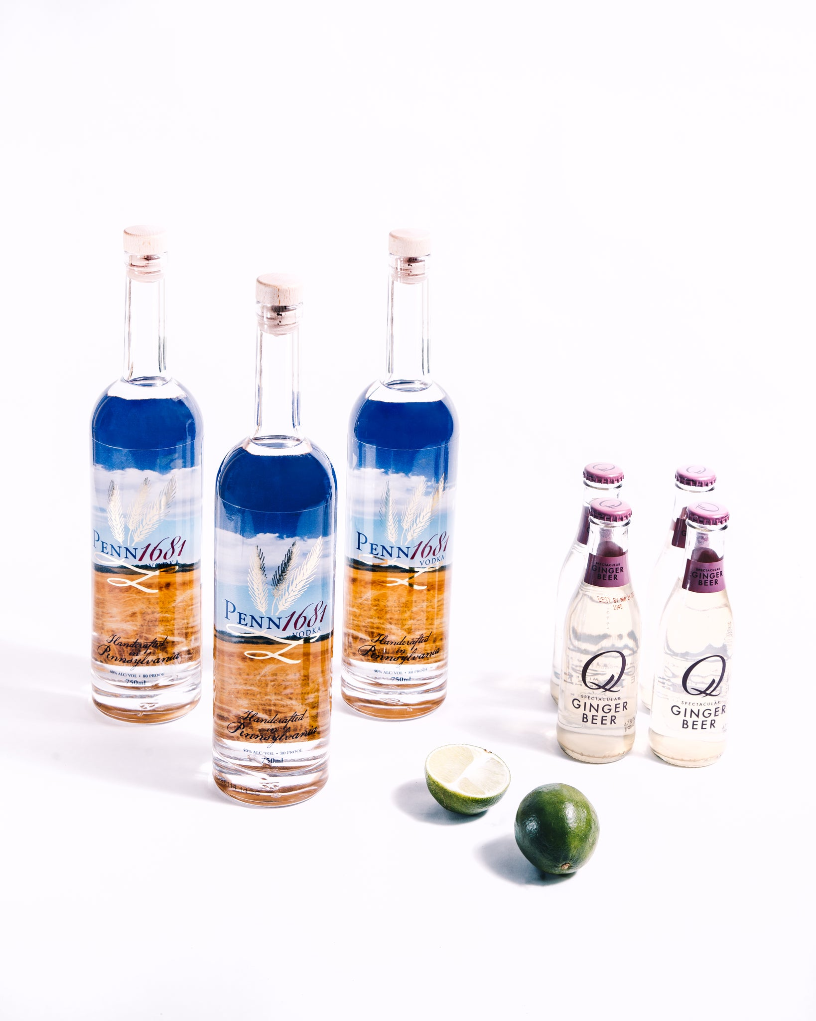 Vodka Moscow Mule Kit