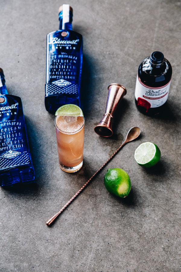 Gin Pomegranate Cooler Kit