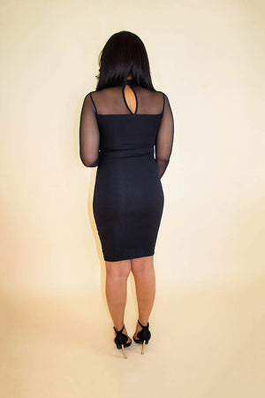 Black Mesh Hook Long Sleeve Dress
