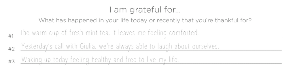 my life journal gratitude