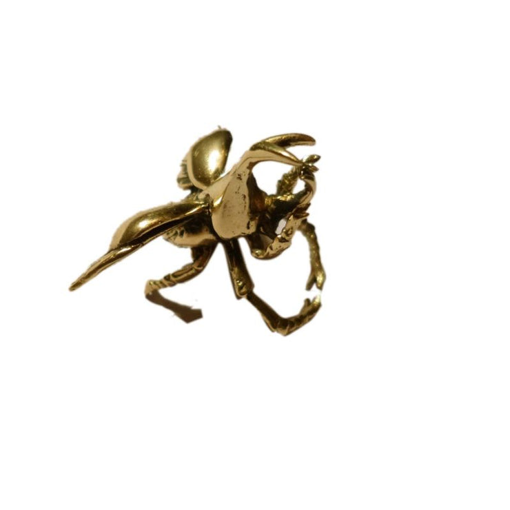Brass Stag Beetle Ring Foragedesign Jewelry / Rings