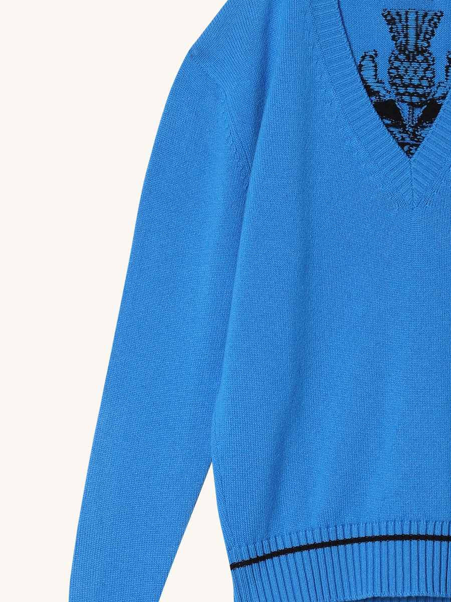 V-Neck Cashmere Sweater in Blue & Black