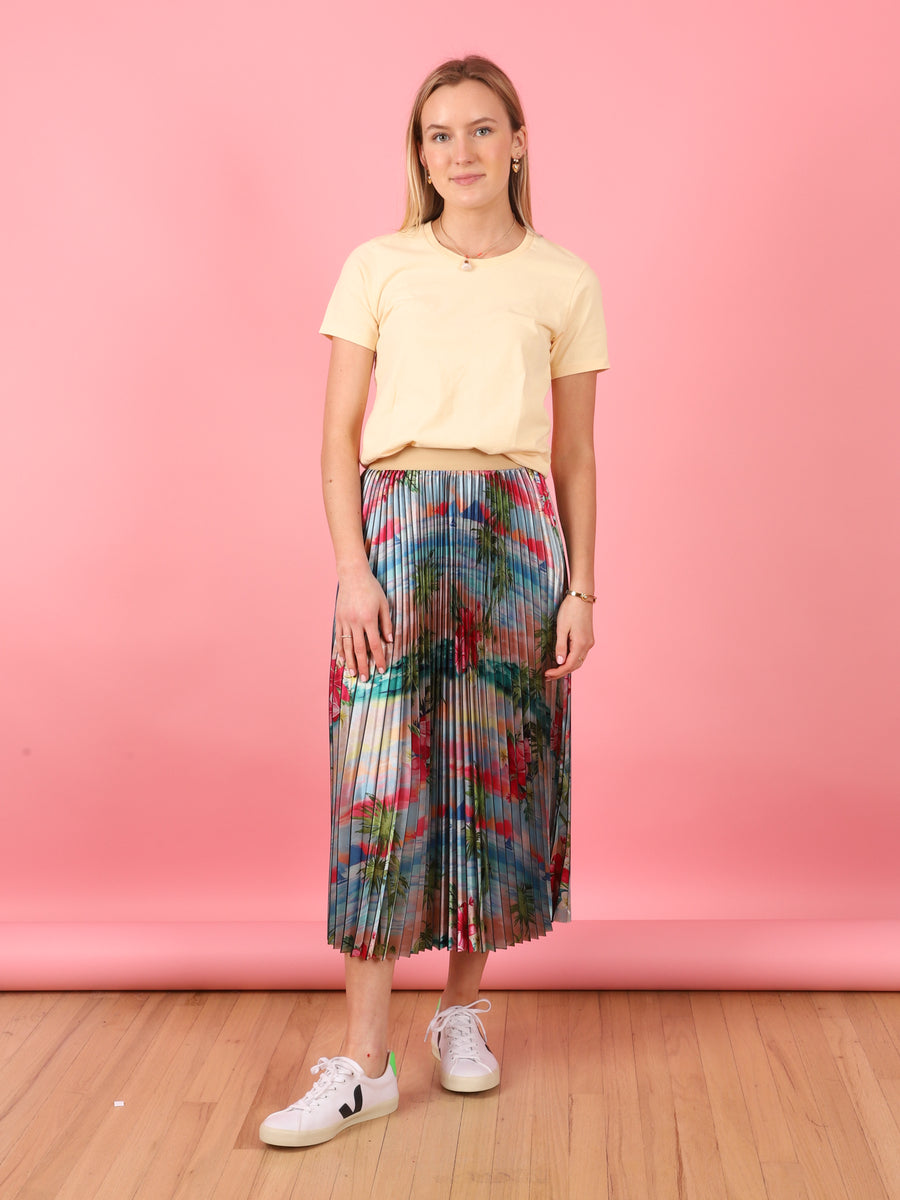 Pretty Pleats Skirt