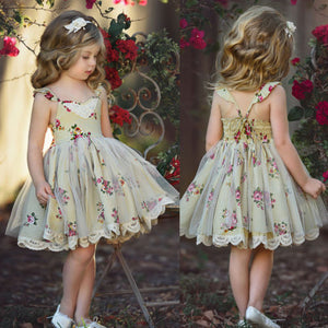 Girls  Lace Flower Dress Tutu Ball Gown Dress