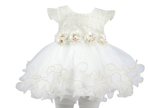 Baby Girl  Infant Gold Glitter Floral Short Sleeve Tutu  0 to 9 Months