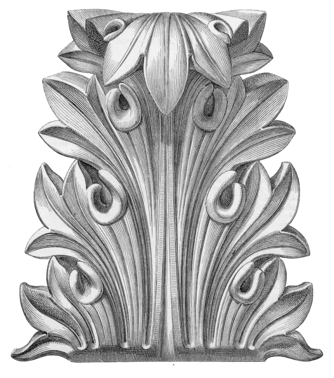 Acanthus Leaves for Detailing Wood Furniture and Cabinetry