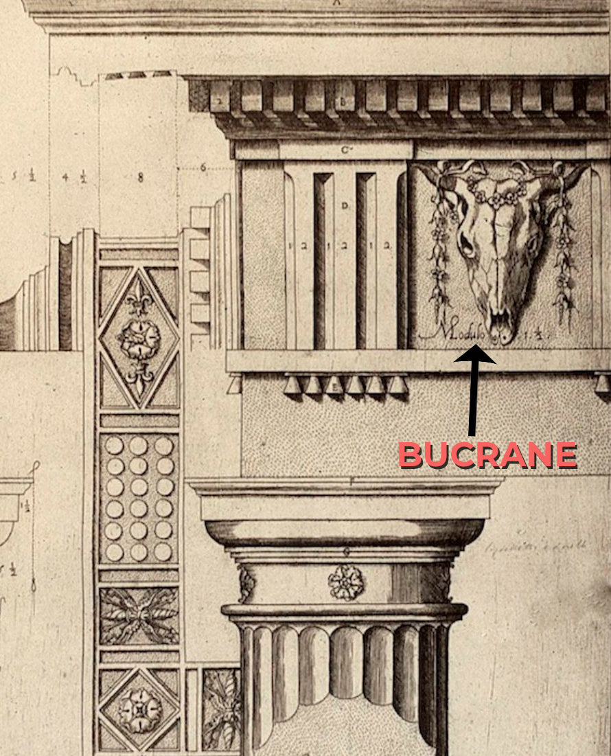 Brockwell Incorporated's Glossary explaining the classical Bucrane detail