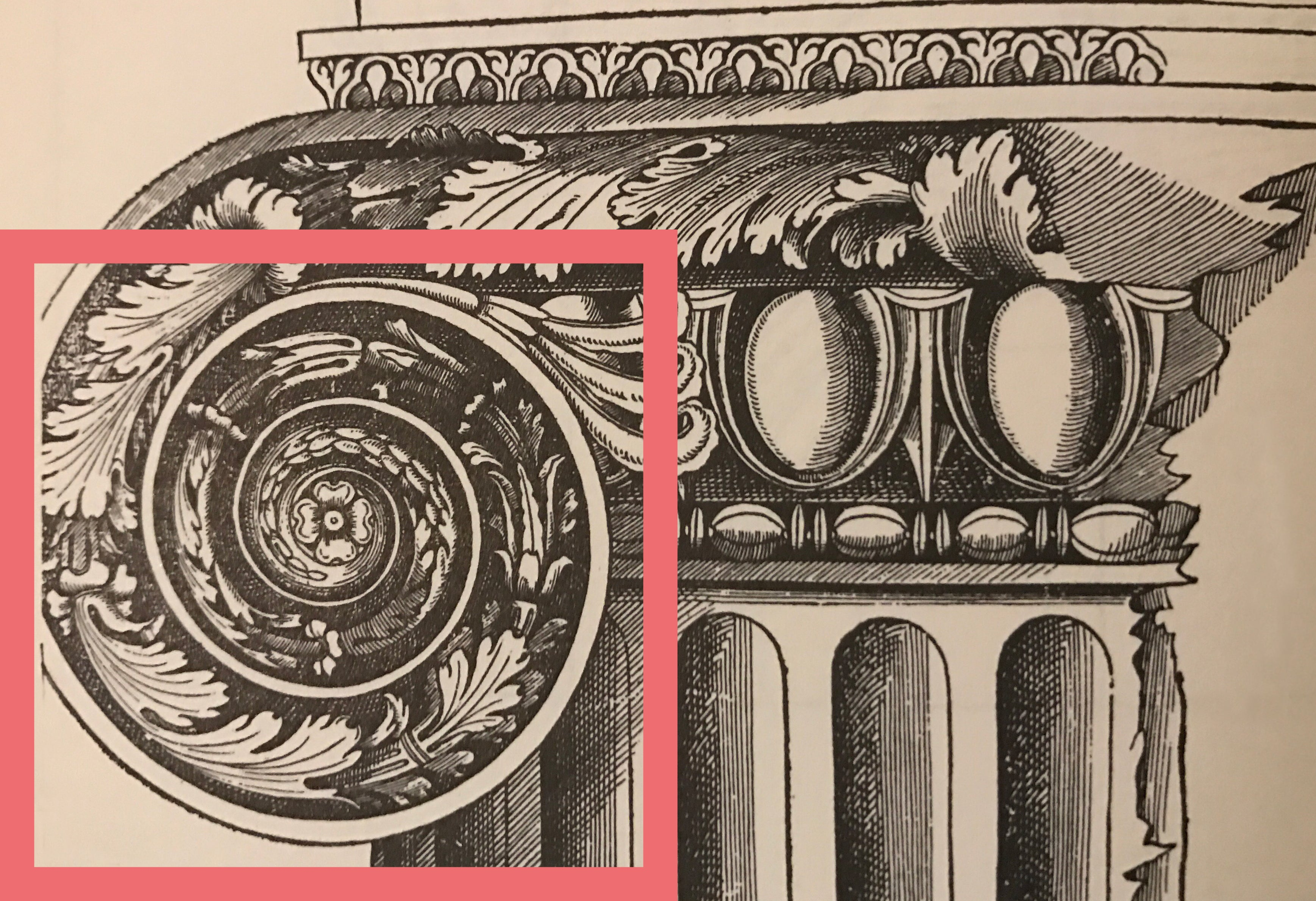 eye of a volute or scroll illustrated sketch for brockwell incorporated's glossary of classical architectural terms