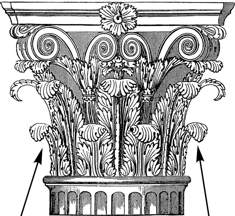 Acanthus Leaf Detailing is Prevalent in Classical Design, Especially on Roman Corinthian Capitals