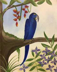 """Blue Macaw""    7:00 pm Thursday, May 31, 2018"