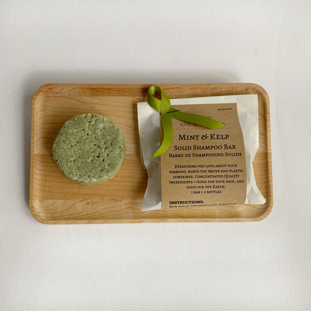 Mint & Kelp Solid Shampoo Bars