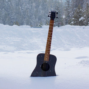 best travel guitar that can survive the cold