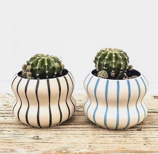 Blue Stripe Pocket Planter