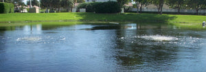 THE IMPORTANCE OF POND AERATION