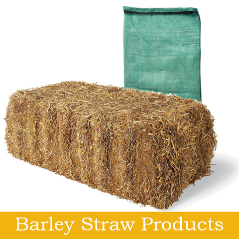 Barley Straw Products