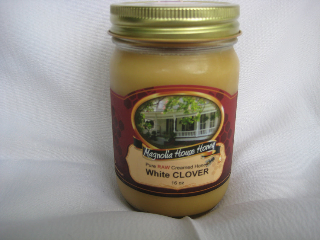 Creamed Clover Honey 16oz - Magnolia House Honey