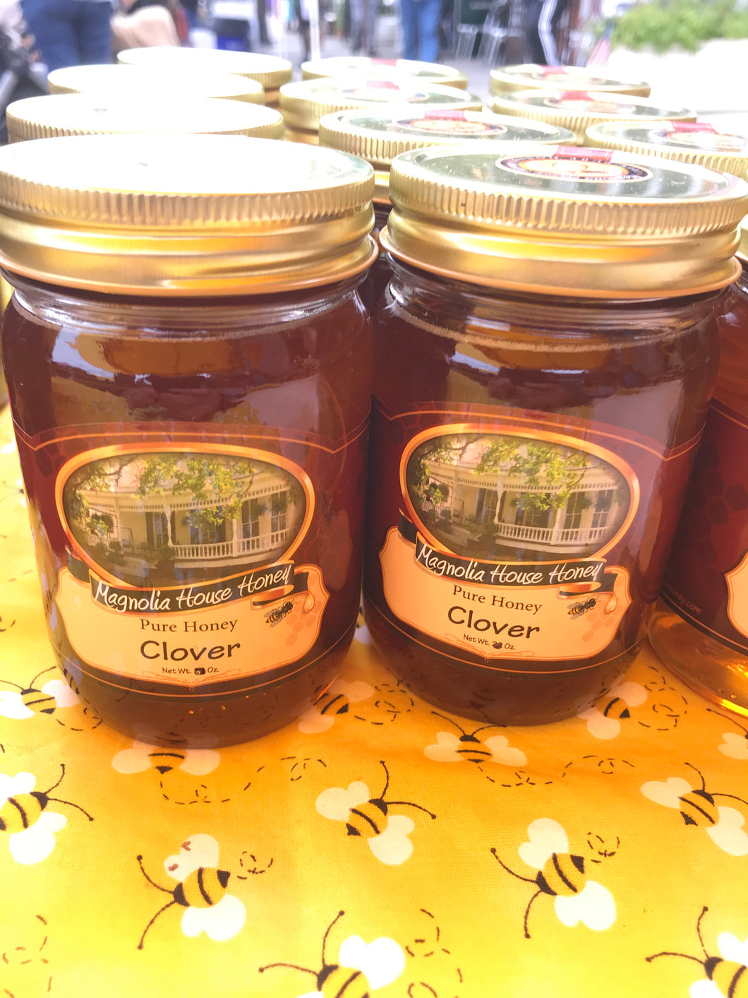 16oz Clover Honey - Magnolia House Honey
