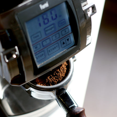 Baratza Forté-AP Grinder dosing from Filter - Lifestyle Image