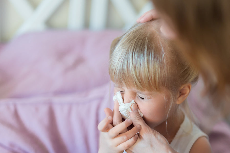 Reducing Seasonal Allergies in the Home
