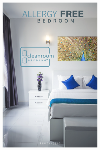 dust mite allergy free bedroom