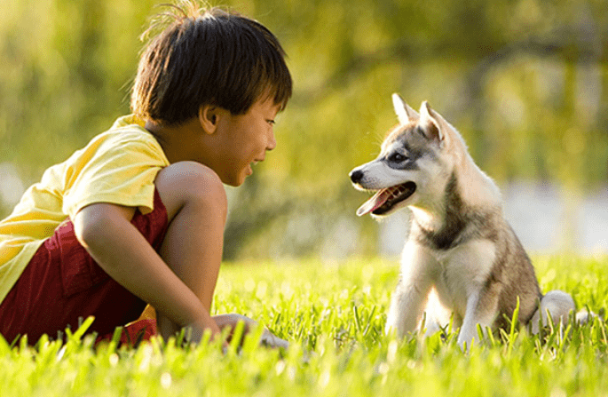 Benefits of growing up with pets