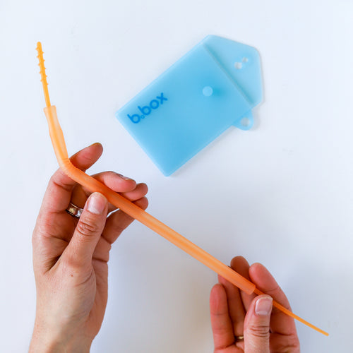 *NEW* silicon straw travel set