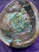 Sea Shell (Abologne)