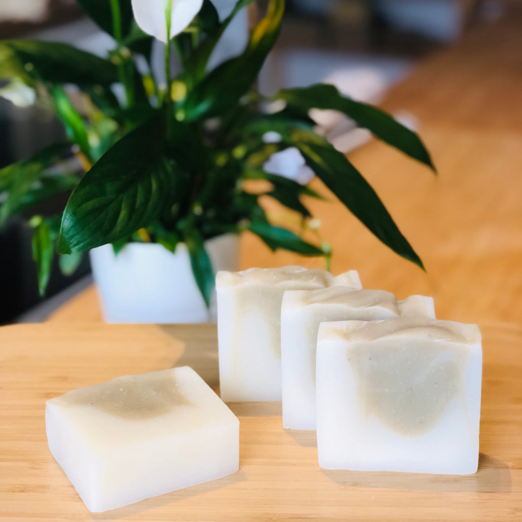 Coconut + Mint Shave & Soap Bar (120g)