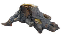 Hobby Stump Cavity 2