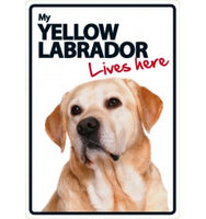Yellow Labrador Lives Here Sign